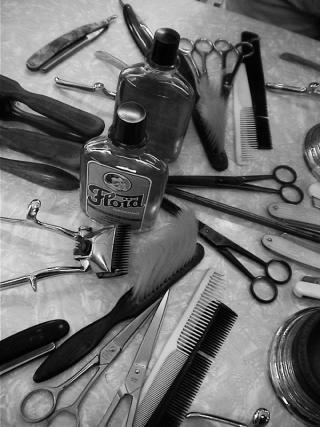Estris barberia
